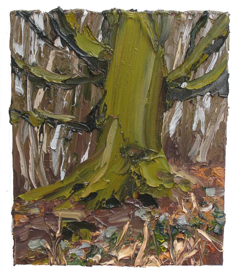 Colin Halliday, Ancient Oak