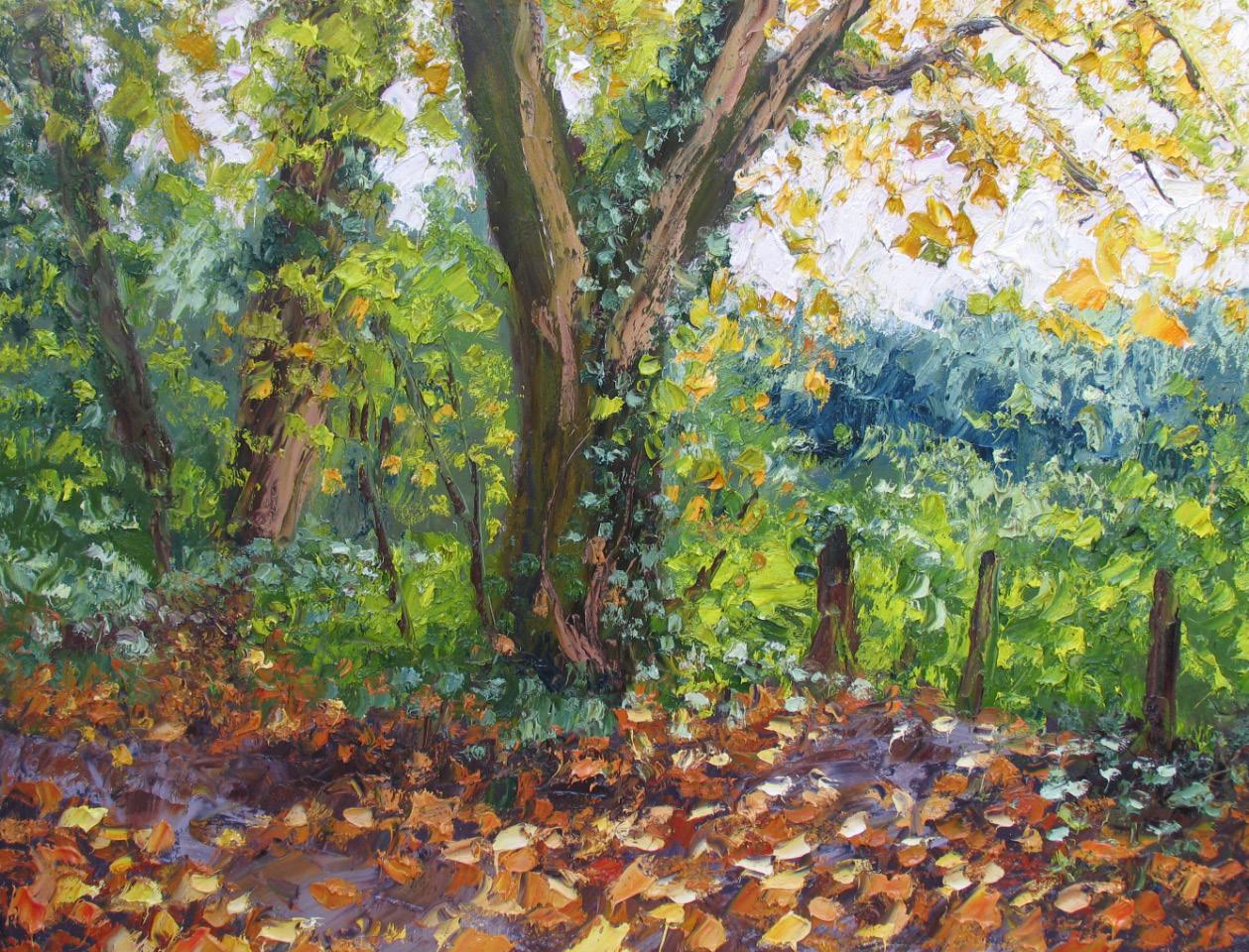 Colin Halliday, Autumn Woods