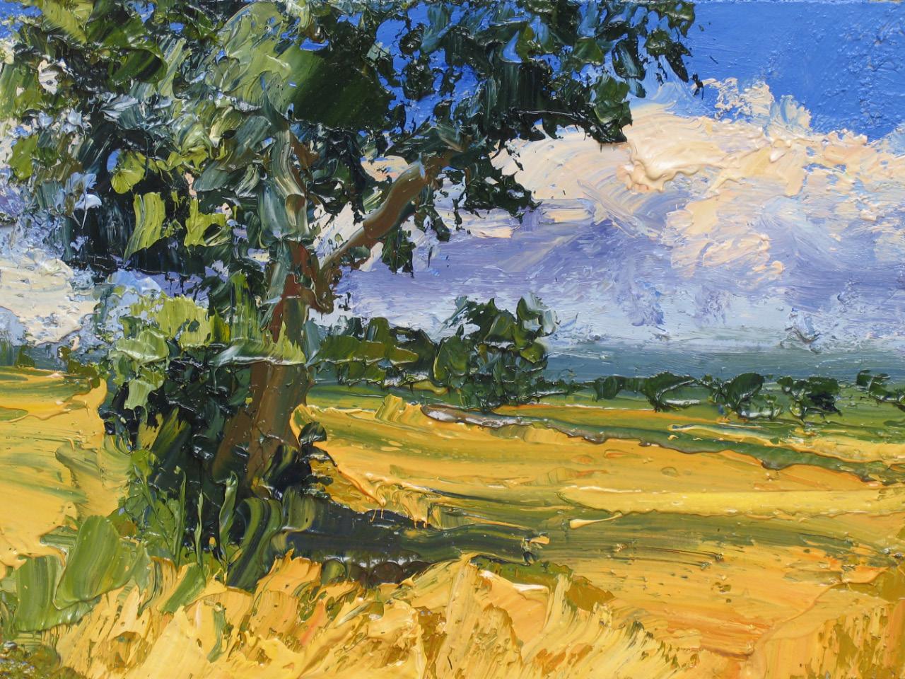 Colin Halliday, Summer Cornfield