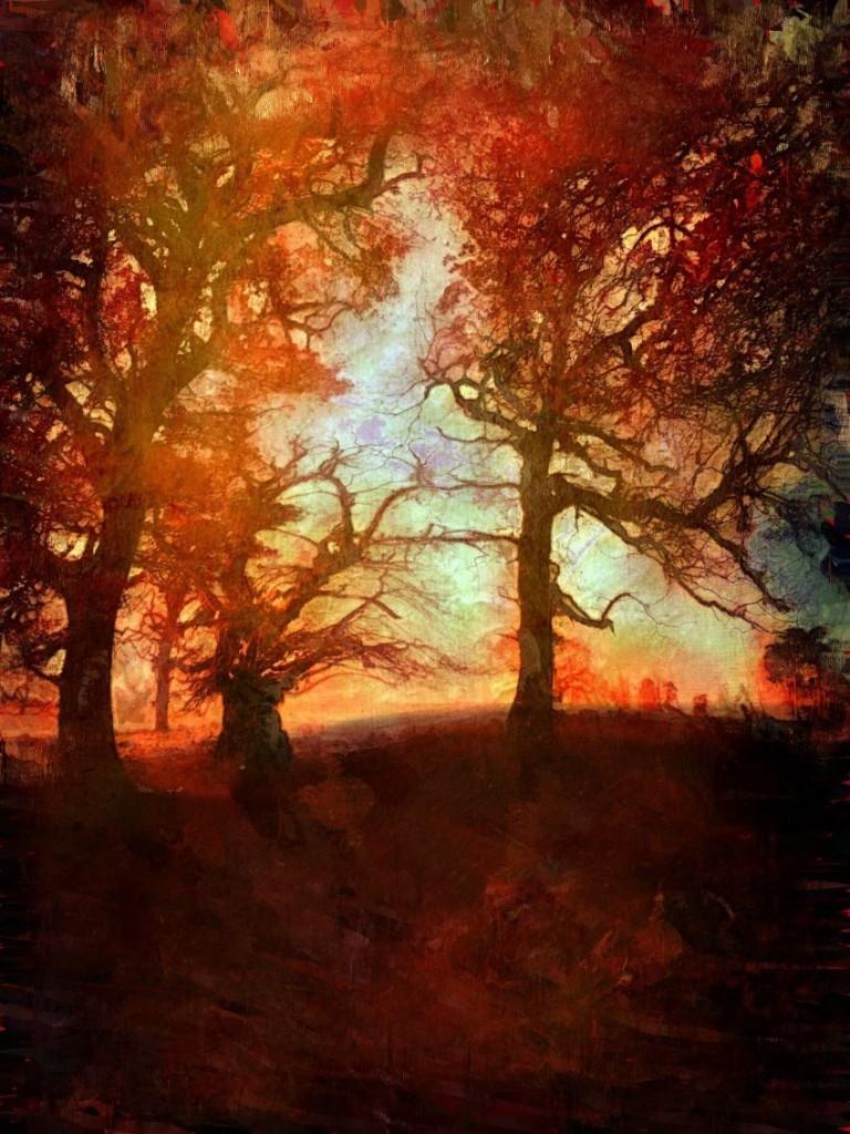 An autumn walk- Calke