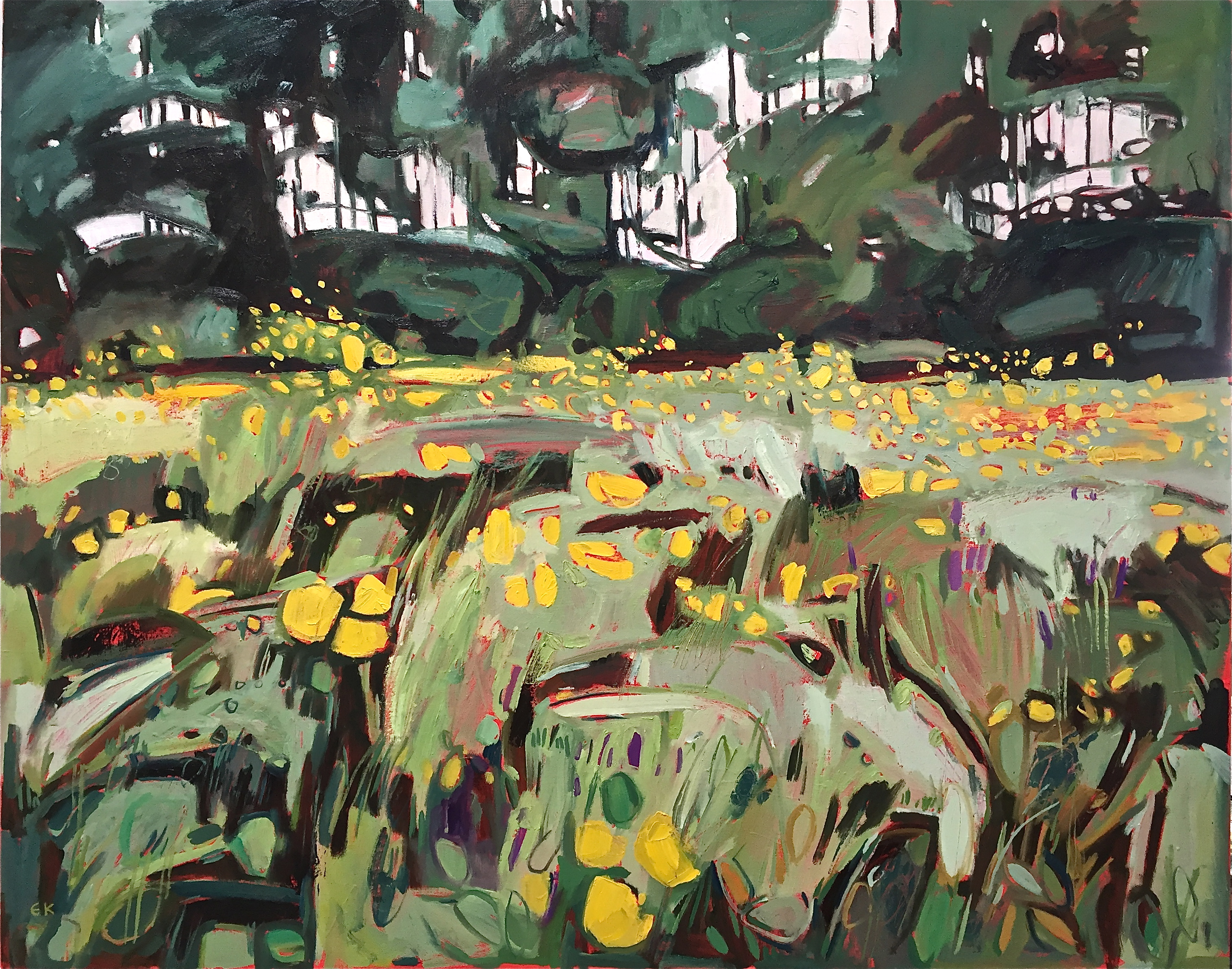 Buttercup Meadow at Grandpont, Oxford, 102 x 127cm, Oil on canvas, £1950