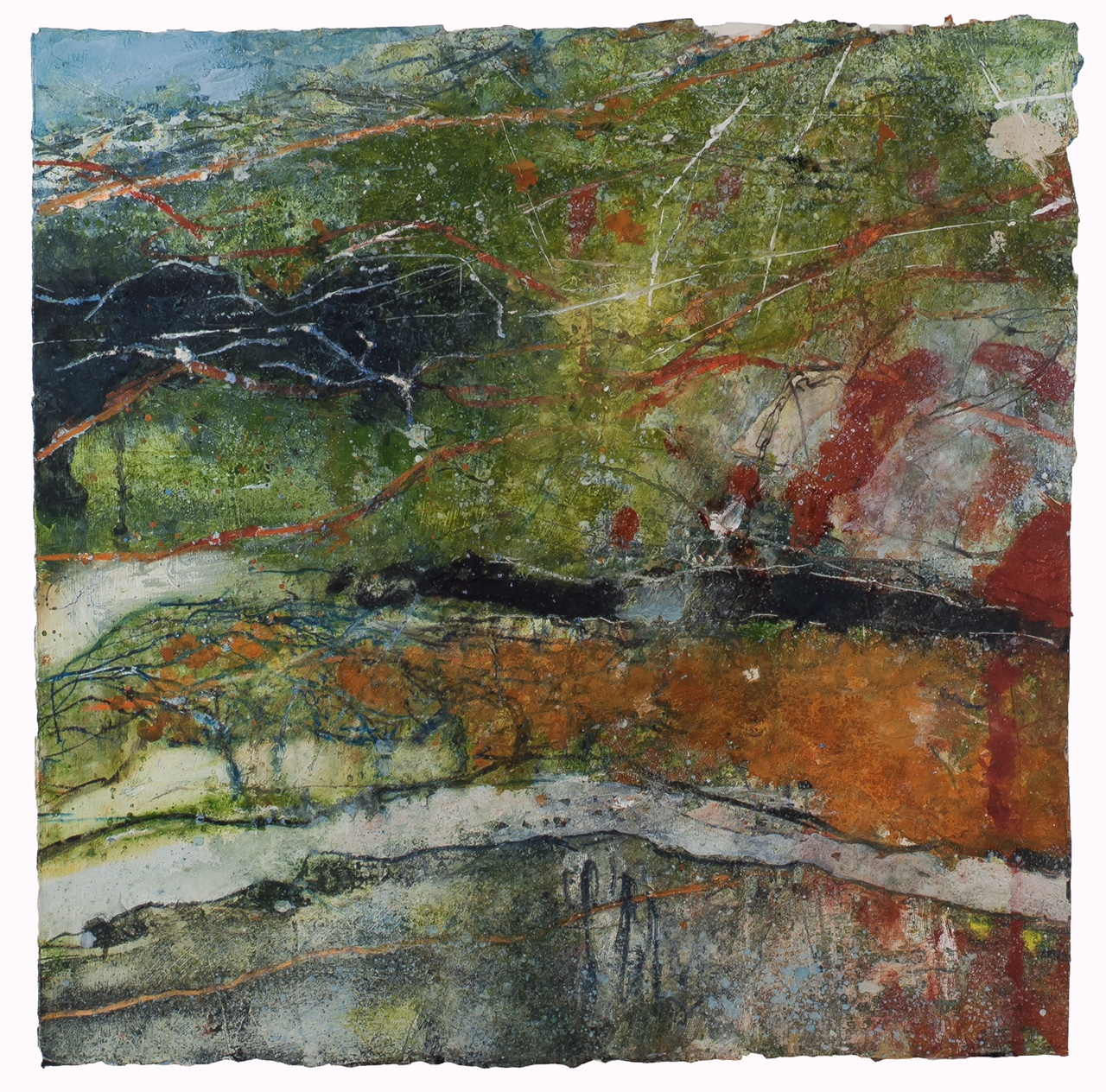 Hawthorn Hillside, Edale. Watercolour & Mixed media on paper 45x45cm