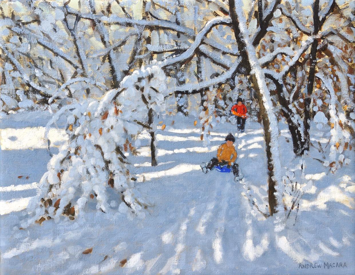 Andrew Macara, Two sledgers, Allestree Woods