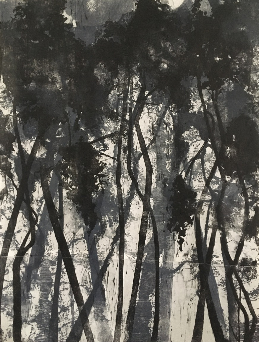 Jo McChesney, Treelines,