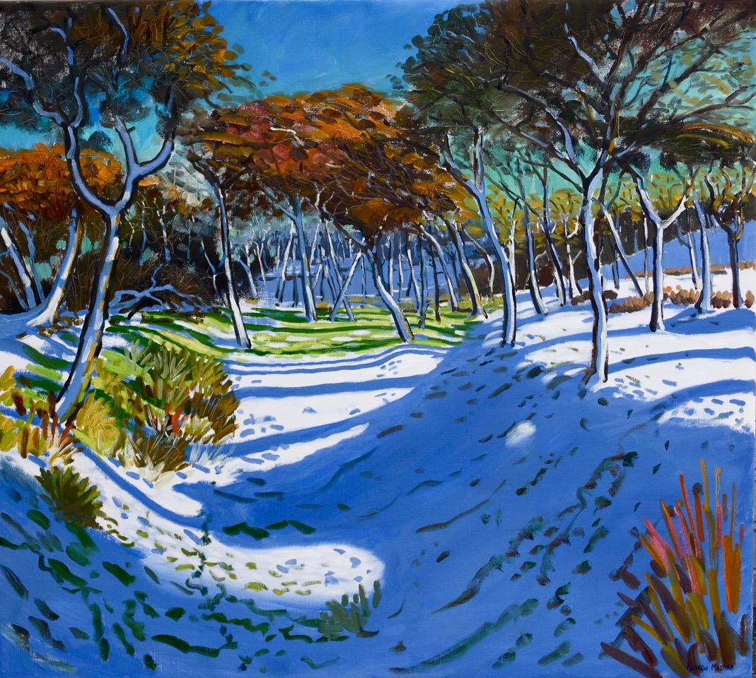 Andrew Macara, The Gully, Ladmanlow